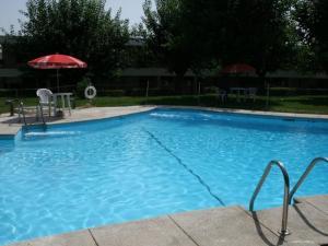piscina_de_verano_los_olivos_getafe